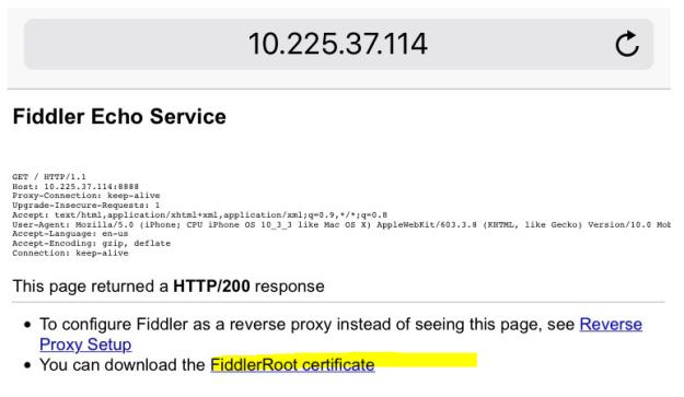 Fiddler it | Trying to make sense of software testing